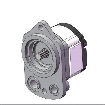 hydraulic gear pump in Nevada