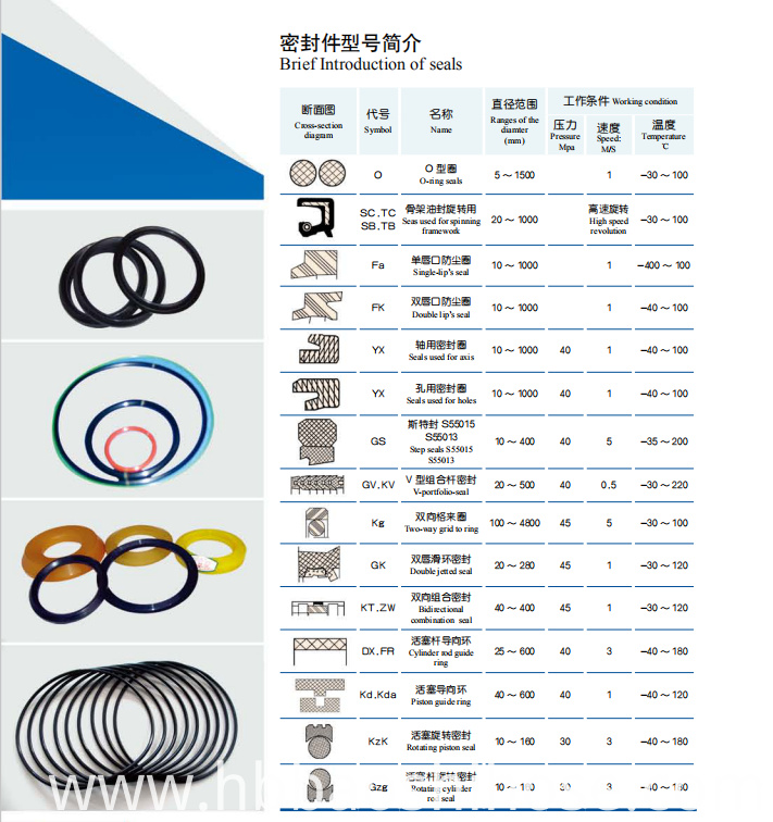 Common Sealing Gasket