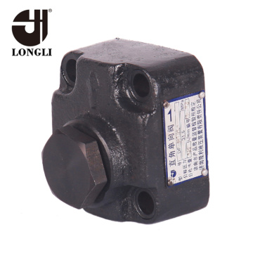Straight Plate Cast Iron Non Return Check Valve