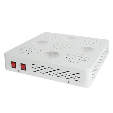 COB Led Grow Light for Hydroponics System Flowering
