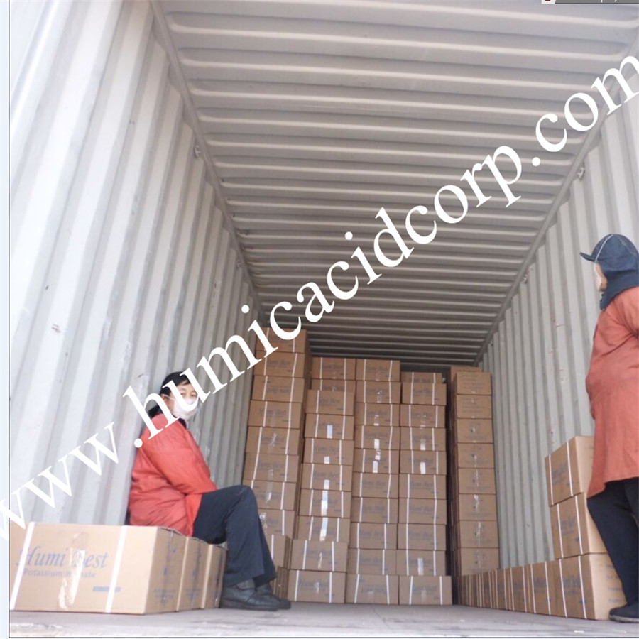 Potassium Humate Flakes Loading Container