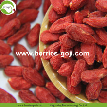 Factory Wholesale Low Sugar Mechanical Drying Wolfberries