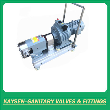 Sanitary rotary lobe pumps with motor
