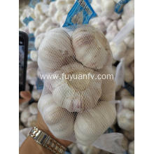 Top quality normal white garlic to Australia