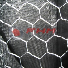 100% Original Factory for Galvanized Wire Chicken Wire Mesh Galvanized Before Weaving GBW Hexagonal Wire Netting supply to United States Wholesale