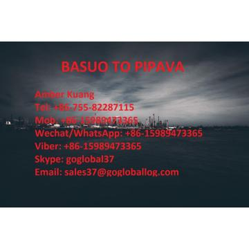 Hainan Basuo Sea Freight to India Pipava