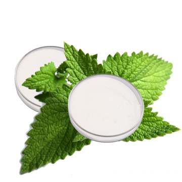 China stevia rebaudioside  organic sweet leaf extract stevia powder