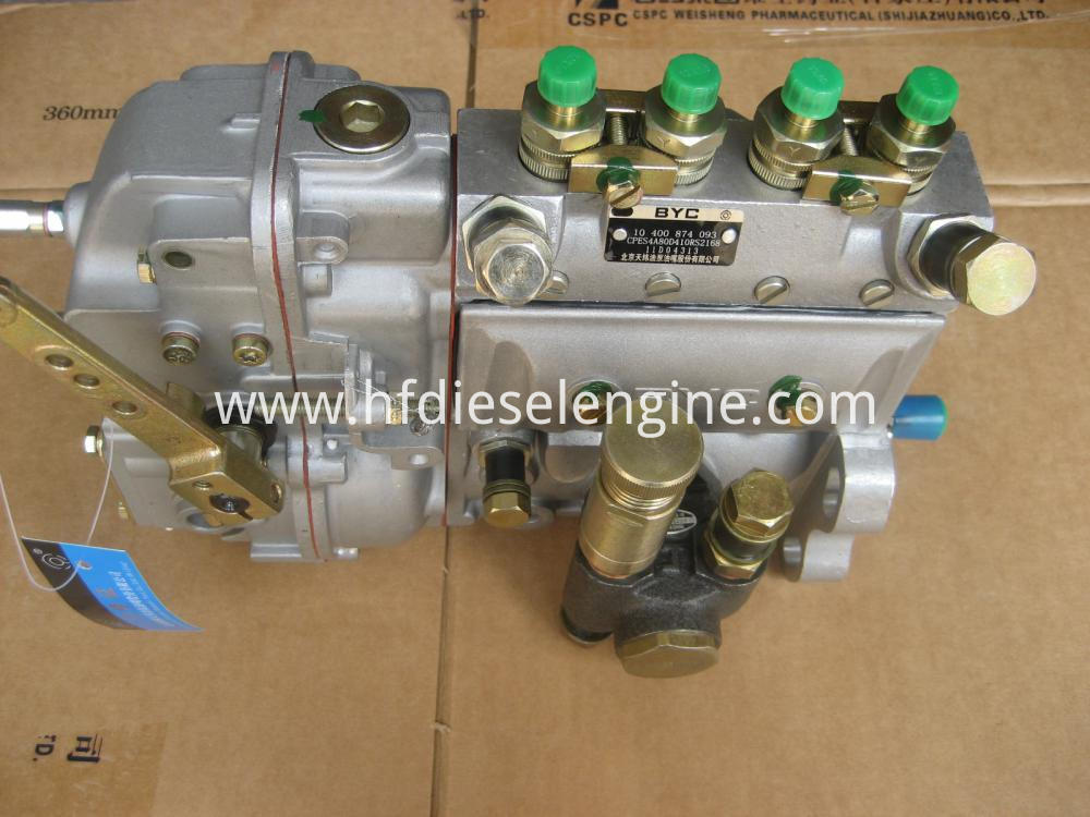 deutz fuel injection pump (2)