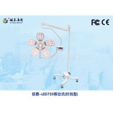 OEM for Medical Lamp Clinic mobile shadowless light export to Ghana Importers