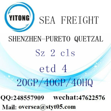 Shenzhen Port Sea Freight Shipping To Pureto Quetzal