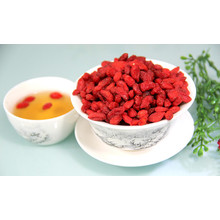 High quality Organic Certificated Goji Berry/Sun Dried Goji Berry