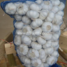 Hot selling attractive for Fresh Pure White Garlic super garlic from factory supply to Montenegro Exporter