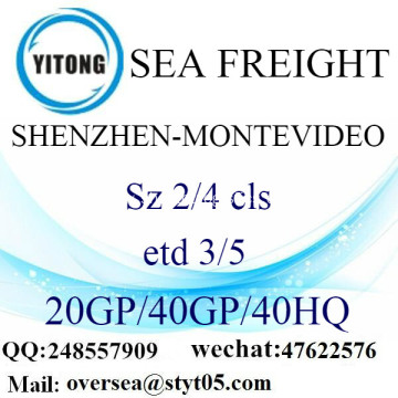 Shenzhen Port Sea Freight Shipping To Montevideo