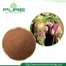Best selling natural peruvian maca extract