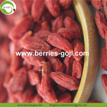 Gift Package Natural Nutrition Vitamins Common Goji Berries