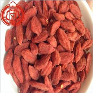 Raw Organic Goji Berry Dried Fruit