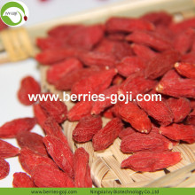 Factory Supply Natural Bulk Fruit Products Goji Berries