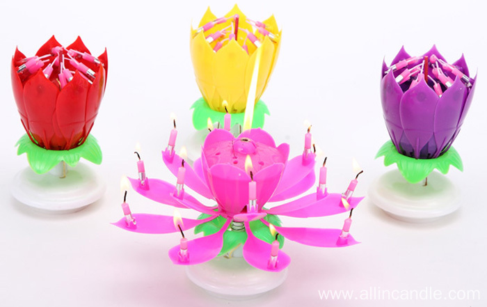 Lotus birthday candle music birthday candles