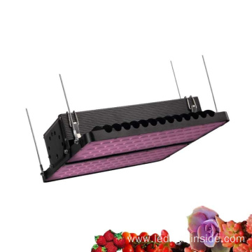 High Power Plant LED Grow Light 400W 800W