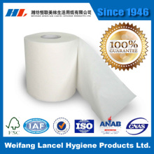 PriceList for for Toilet Paper Roll Extra soft  virgin pulp bath tissue paper export to Mayotte Factory