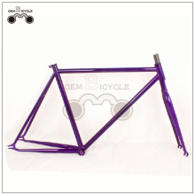 wholesale fixie bike bicycle cr-mo frame