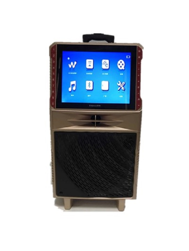 Portable Bluetooth Karaoke Speaker