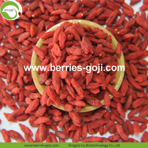 Bulk Factory Supply Dried Zhongning Goji