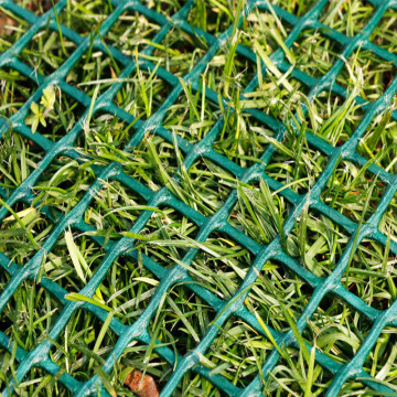 Plastic Grass Protection Net