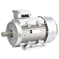 Continuous working 3 phase ac motor 100L1-4-2.2KW 3HP