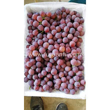 Red Seedless grapes nutrition