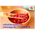 Dried fruit vegetarian food goji berries goji