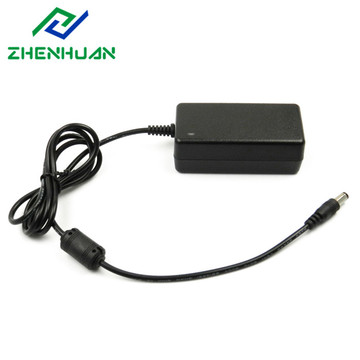 12W 24V 500mA DC to AC Power Adapter