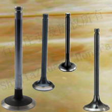 America Series car engine valve for GM