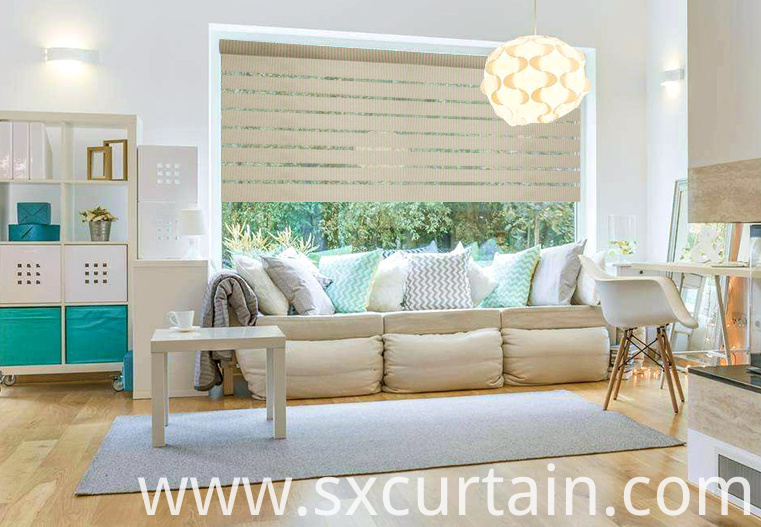 Zebra Roller Blind Curtain Shade Plain