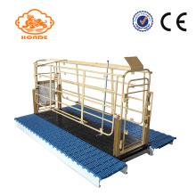 Purchasing for Steel Solid Rod Farrowing Stalls Automatic Welding Steel Tube Pig Pen For Sale export to New Caledonia Factory