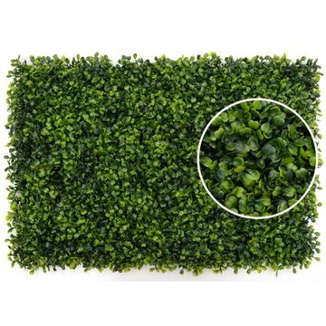 Outdoor Green Plants Vertical Wall For Garden Decoration