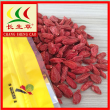 New harvest Tibet organic natural dried goji berries