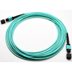 OEM/ODM for Fiber Optic Trunk Cable High Density Low Loss MPO 12 Core Patchcord export to Yugoslavia Supplier