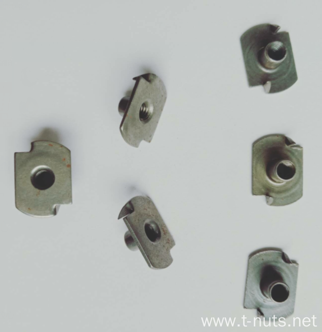 Customized carbon steel 4M T Nuts-2P