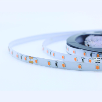 2835SMD 300led Pink Color flexible strip light