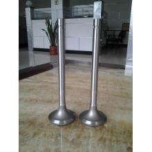 Intake&Exhaust Valve for Train with 4Cr9Si2