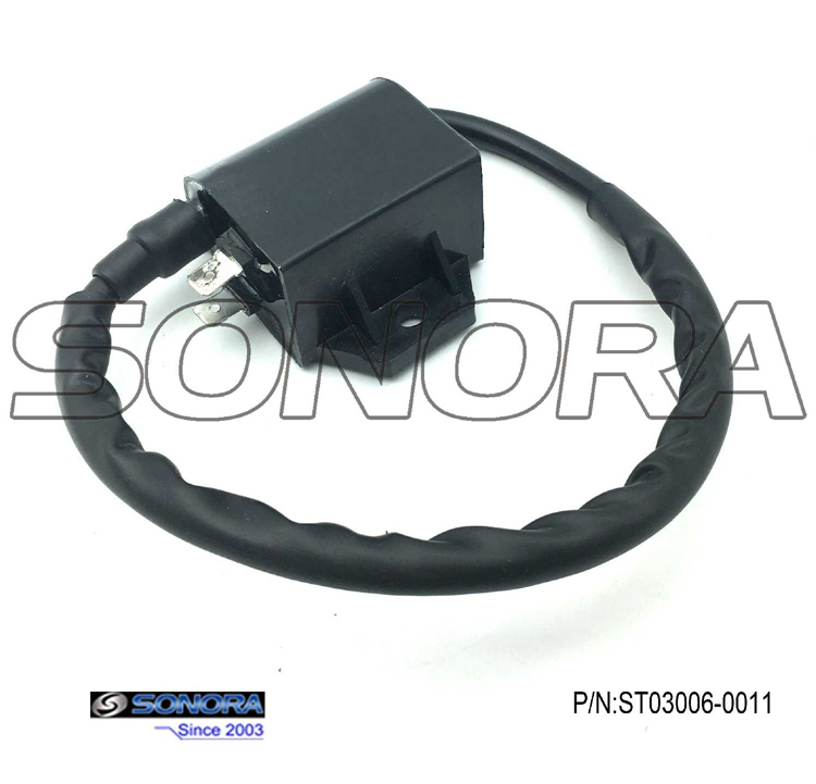 Suzuki AN125 Ignition Coil Replacement
