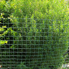 Manufactur standard for Plastic Farm Fence Plastic Agricultural Farm Fencing export to United States Manufacturers