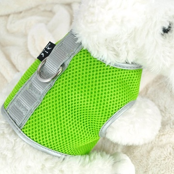High Definition For for Best Air Breathing Mesh Harness,Colorful Mesh Harness,Mesh Harness for Dogs,Stress Free Mesh Harness for Sale Green Small Airflow Mesh Harness with Velcro supply to Poland Manufacturer