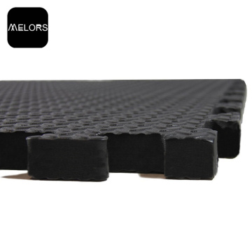 Taekwondo Karate Interlocking EVA Foam Tatami Mat