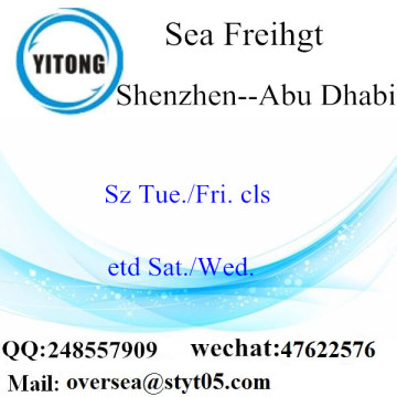 Shenzhen Port LCL Consolidation To Abu Dhabi