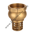 Hot sale Brass Check Valves