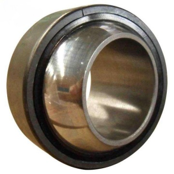 Spherical Plain Bearing (GE100CS-2Z)