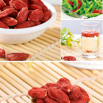 Top Quality for Special Grade Chinese Wolfberry Goji Berries Wolfberry,Quality Low Price Goji Berries supply to Indonesia Wholesale