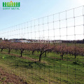 farm fence wire mesh cattle fence field fence